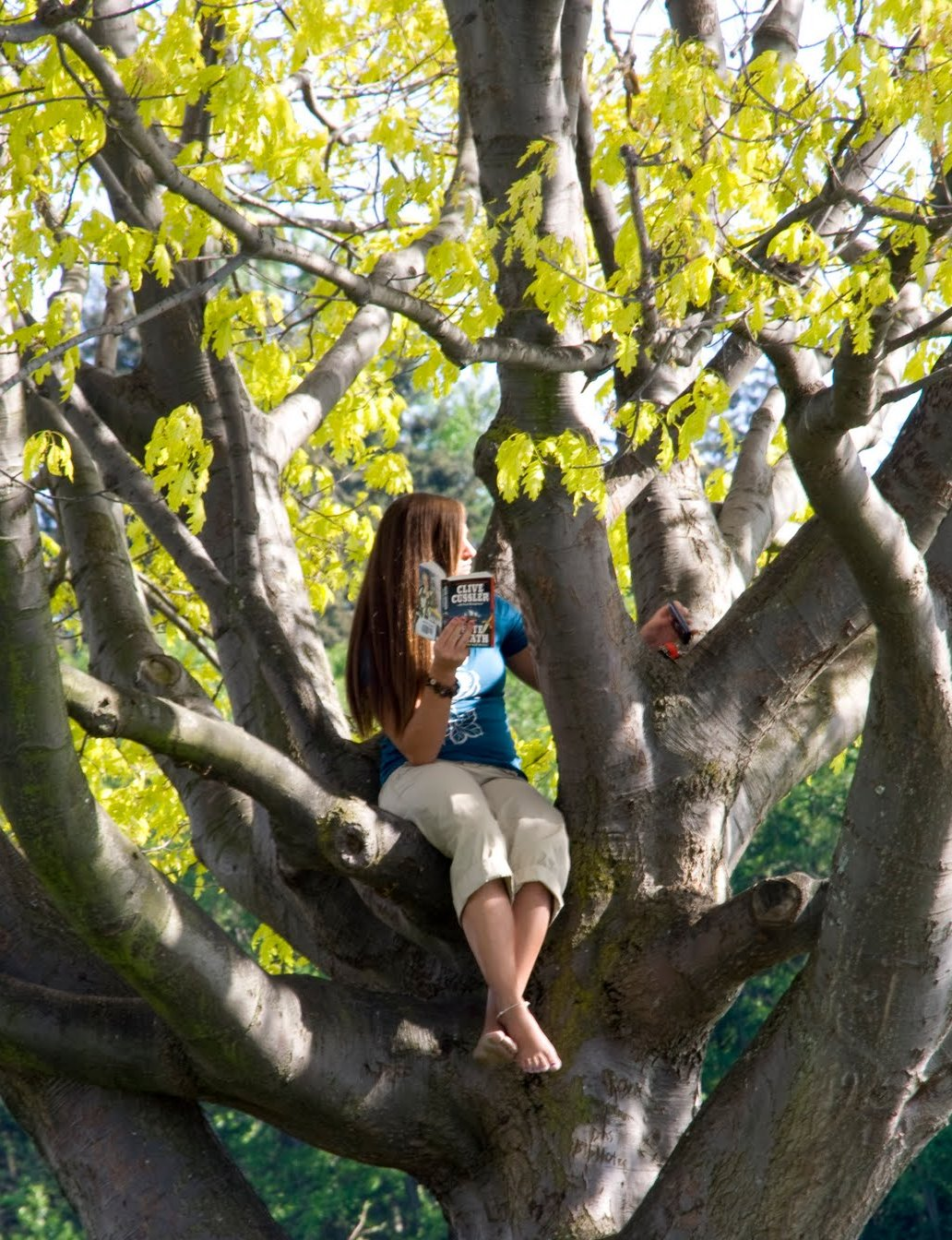 Girl Reading In Tree Two